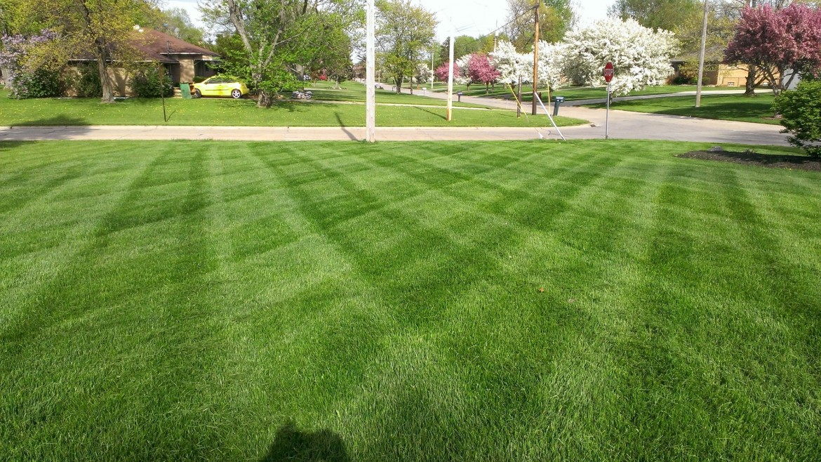 Residential Lawn Care Mowing, Wadsworth, OH 44281 44282