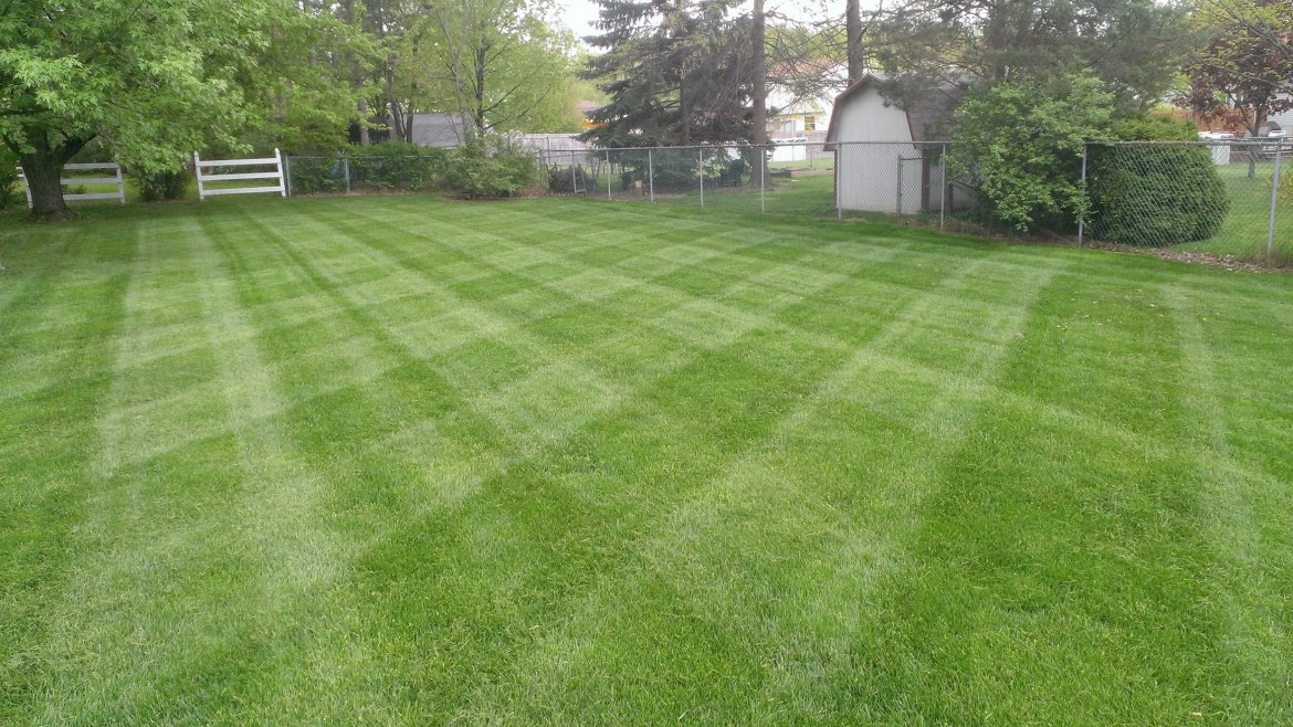 Residential Lawn Care Mowing, Valley City, OH 44280