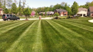 Residential Lawn Care Mowing, Strongsville, OH 44136