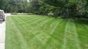 Residential Lawn Care Mowing, Medina, OH 44256